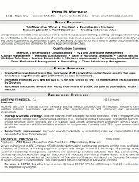 Resume Sample Senior Executive Page 1