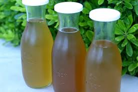 Kombucha Before Bed by Accidental Green Mama Grow A Mother And Brew Your Own Kombucha