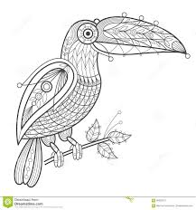 Toucan Coloring Pages Free Printable Toucan Coloring Page For Kids
