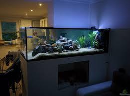 aquarium hauptansicht raumteiler zwischen wohnzimmer küche