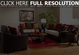 Dark Brown Couch Decorating Ideas by Bohemian Bedroom Glamour Living Room Idea With Small Apartment