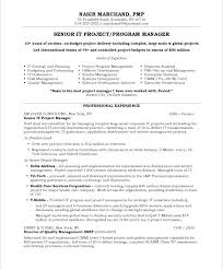Resume Examples For Project Manager Old Version