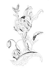 Lost Garden Coloring Book Tulip By Pippa Rossi