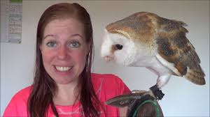 Lookie ISN'T My Pet Owl ??? - YouTube 55 Best Owl Images On Pinterest Barn Owls Children And Hunting Owls How To Feed Keep An Owlet Maya A Brief Introduction The Common Types Of Six Reasons Why You Dont Want An Owl As Pet Bird Introducing Gizmo Baby Whitefaced Youtube 2270 Animals 637 Oh Meine Uhus I Love Owls My Barn Cat Baby By Disneyqueen1 Deviantart All Things Nighttime Predator Cute Animals