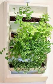 Living Wall Four Container Wall Planter – Plantaire