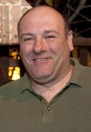 Hit The Floor Cast Member Dies by James Gandolfini Wikipedia