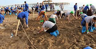 Corporate Outdoor Team Building Activities