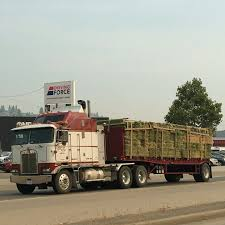 Pin By Urs Jocham On Arbeits Fotos Von Kenworth Trucks USA ...