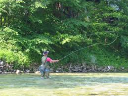 Sink Tip Fly Line Uk by Fly Fishing Wikipedia