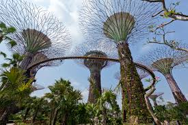 Gardens by the Bay Grant Associates