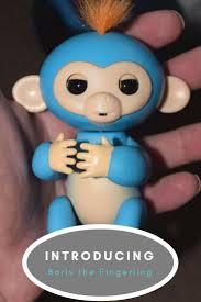 Meet Boris Our New Fingerling Monkey Toy