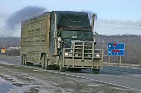 Electronic Logging Devices: Where Do We Go From Here? S And T Trucking Livestock Relocation Kenworth Cattle Trucks Midwest Group More About Our Professional Trucking Company In Huron Sd Legislation Introduce To Study Regulations Reform Jvlx Inc Home Firms Worried Electronic Logging Device Could Hurt Lunderby Llc About Us Vanee These Are The People Who Haul Our Food Across America Salt Npr Connolly American Truck Simulator Peterbilt 389 Hauling Youtube