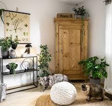 wohnzimmerblick bauernschrank alte möbel pflanzen plant