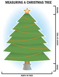 Christmas Tree Permits Colorado Springs by Christmas Tree Hunting Can Be Easy Or Work Events