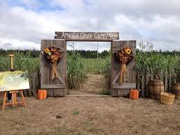 Celina Pumpkin Patch Directions by 185 Best Mazes Images On Pinterest Corn Maze Pumpkin Patches