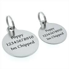 Dog Paw Print Pumpkin Stencils by Id Tags For Dogs Amazon Co Uk