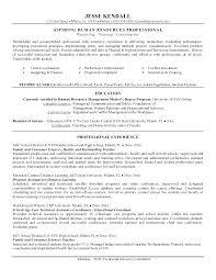 Job Fair Resume Objective Examples Professional Objectives For Example Resumes Career Sample Employment Aspiring Human Resources
