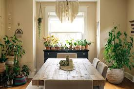 my houzz houseplant happy in a boho style d c home