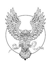 Download Owl With Snake Coloring Book For Adults Vector Stock