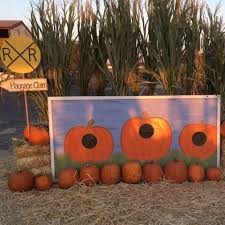 Pumpkin Patch Fresno Ca First News by Longhorn Feed Pumpkin Patch And Christmas Trees Home Facebook