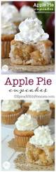 Bobby Flay Pumpkin Pie With Cinnamon Crunch by Best 25 Apple Pie Cheesecake Ideas On Pinterest Apple Crescent