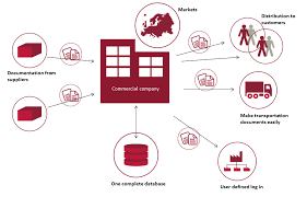 company bureau are you responsible in a commercial company bureau veritas hse