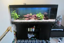 juwel 400 aquarium in black ash at aquarist classifieds