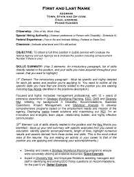 New Sample Resume Template Federal