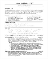 Functional Project Manager Resume Templates Get Instant Risk Free Access To
