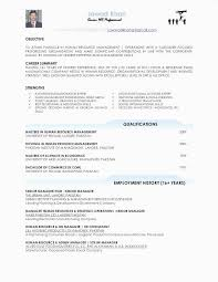 Free Skills In A Resume Examples Inspirational New 0d Good For