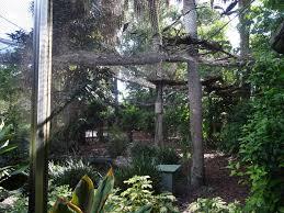 Kookaburra s Nest Walkthrough Aviary at Busch Gardens Tampa