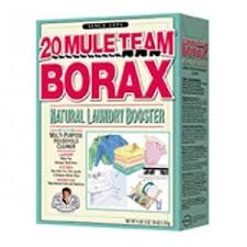 The Biz of Life 25 Uses for Borax