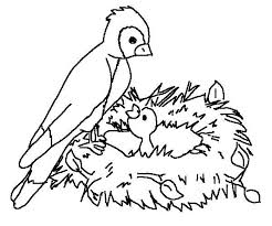 Printable Bird Coloring Pages Me