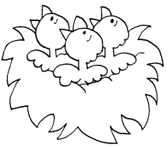 Homey Idea Spring Animal Coloring Pages For Kids Ville