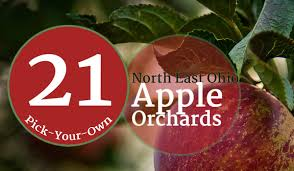 Wadsworth Ohio Christmas Tree Farm by 21 Pick Your Own Apple Orchards Across Northeast Ohio