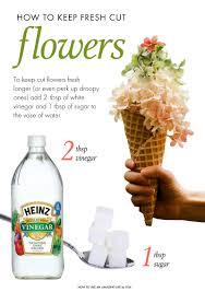 Christmas Tree Preservative Aspirin by How To Keep Flowers Fresh After They U0027re Cut Diy U0026 Crafts