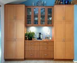 Decoration Stunning Dining Room Cabinets Design Ideas For Storing And Displaying To Make A Great