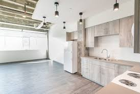 100 What Is A Loft Style Apartment Edmonton Pet Friendly For Rent Spruce Venue Brand New Modern ID 347614 RentFasterca