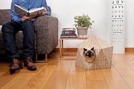 maison en cube et aire de jeu pour chat voyageur maxitendance