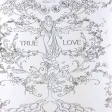 Beauty And The Beast Coloring Book For Adult Kids Mandala Secret Garden Books Antistress Art Quiet Color Drawing 2525cm 48Pages