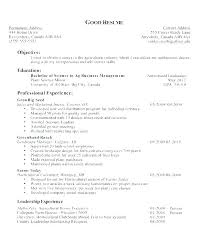 Example Career Objective For Resume Examples Of Objectives On