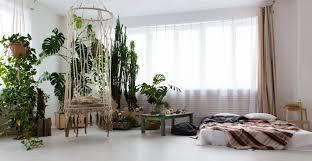 jungle wohntrend mit tropen feeling lomado möbel