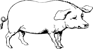 Pig Clipart Black And White 1 Clip Art At Clker Vector Online Royalty