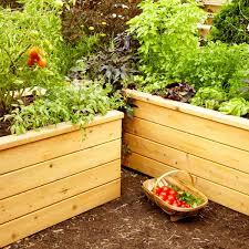 Richard Vegetable Garden 8 Ft X 2 Ft Cedar Wood Raised Garden