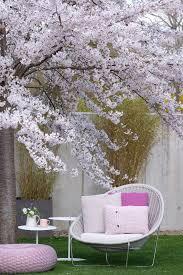 altrosa pink rosa