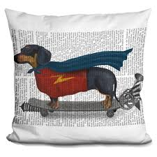 Lilipi Dachshund On Skateboard Decorative Accent Throw Pillow, Multi ...