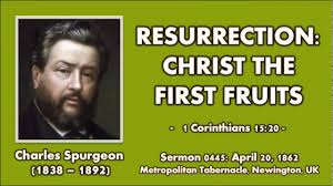 Sermon 0445 Resurrection Christ The First Fruits Charles Spurgeon 1862