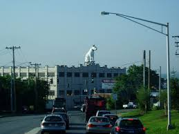 North Albany, Albany, New York - Wikipedia I Want To Rent A Pickup Truck Fresh 2018 Ford F 150 Leasing Near Rob Goble General Manager Mcmahon Linkedin Home Abele Tractor Equipment Co Stuck Under Bridge Stops Traffic In Dtown Schenectady The Enterprise Rental Albany Ny Avondale Chevrolet Car Dealership East Syracuse Cicero Ny Hl Gage Sales Inc 12205 View Our Print Ads How Much Does A Food Cost Open For Business Uncategorized Stephenson Uhaul Best Resource Bounce Houses Inflatable Rentals Oneonta Utica Night Owl Towing Road Svc Townight Tow