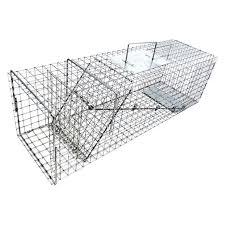live cat trap the 25 best cat traps ideas on felt cat needle