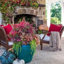 2.5 Qt. Obsession Nandina | Plants And Gardens